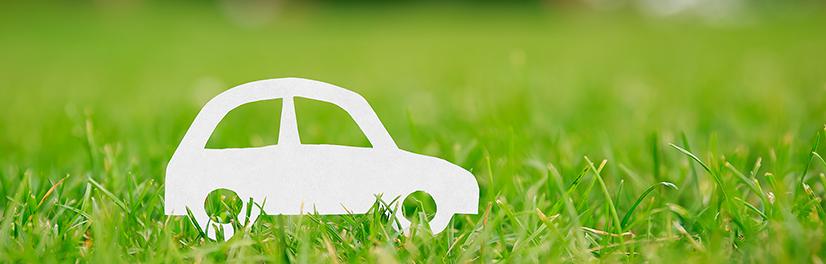Milieu Elektrisch Versus Conventioneel Wagenplan B V